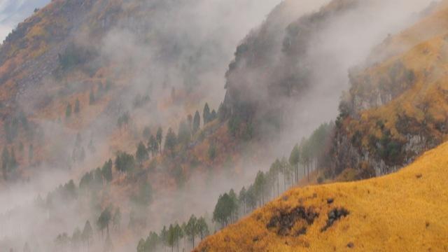 阿蘇九重國立公園 阿蘇地質公園