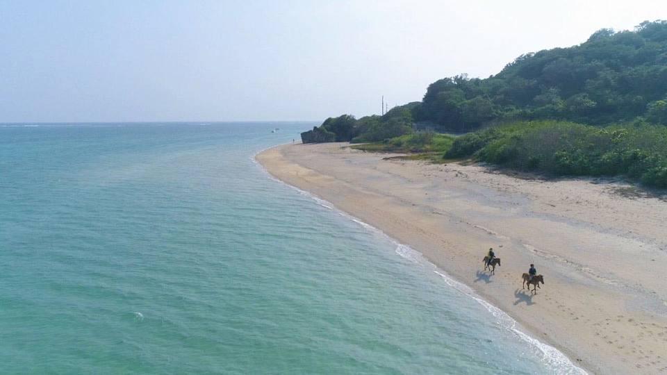 ヨナグニウマと海散歩「うみかぜホースファーム