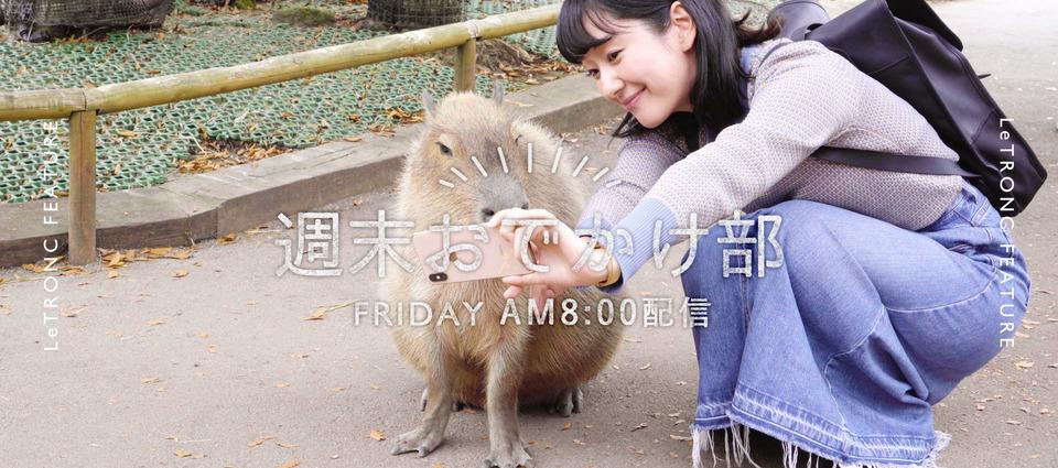 大人の遠足に巡りたい!静岡・御殿場のおすすめ観光スポット6選