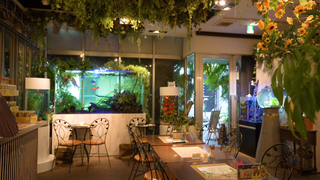 私を癒す街中のオアシス。自然にあふれたカフェ&レストラン