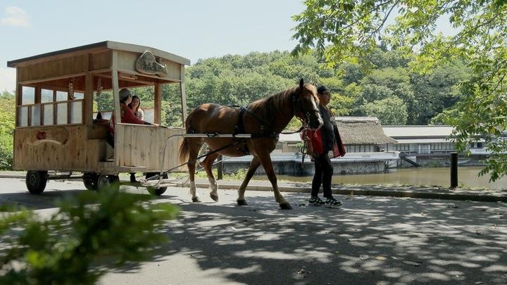 充分享受貼近當地的青森體驗 「星野渡假村 青森屋」體驗活動3選の1番目の画像