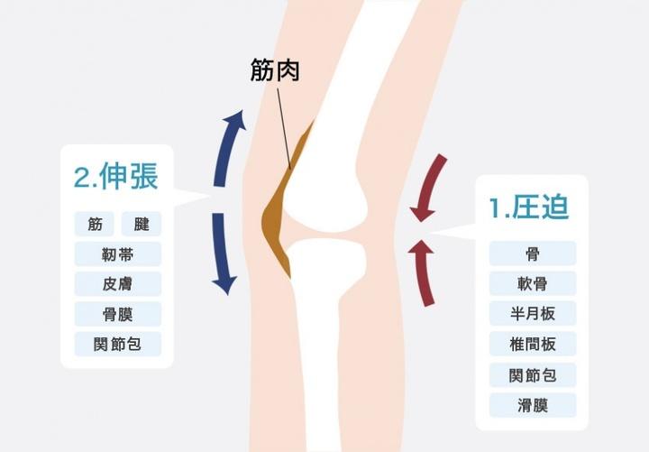 足の関節の動きを表すイラスト