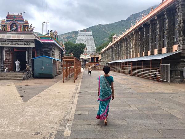 インドの民族衣装を着た女性