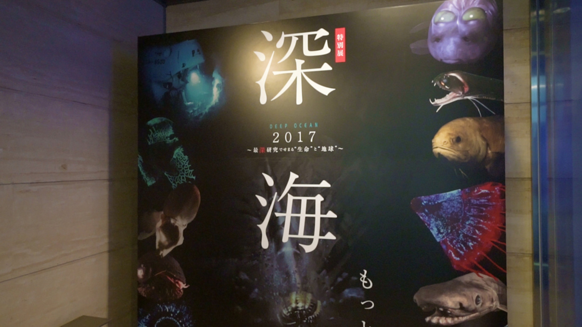 """特別展 「 深海2017 〜最深研究でせまる""""生命""""と""""地球""""〜 」"""