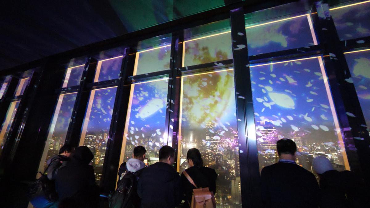 TOKYO TOWER CITY LIGHT FANTASIA ~夜桜バージョン~