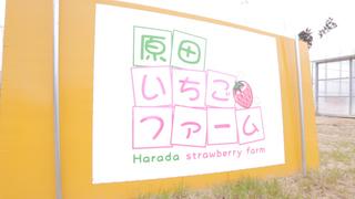 原田いちごファーム