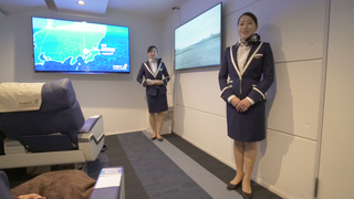 FIRST AIRLINES JAPAN
