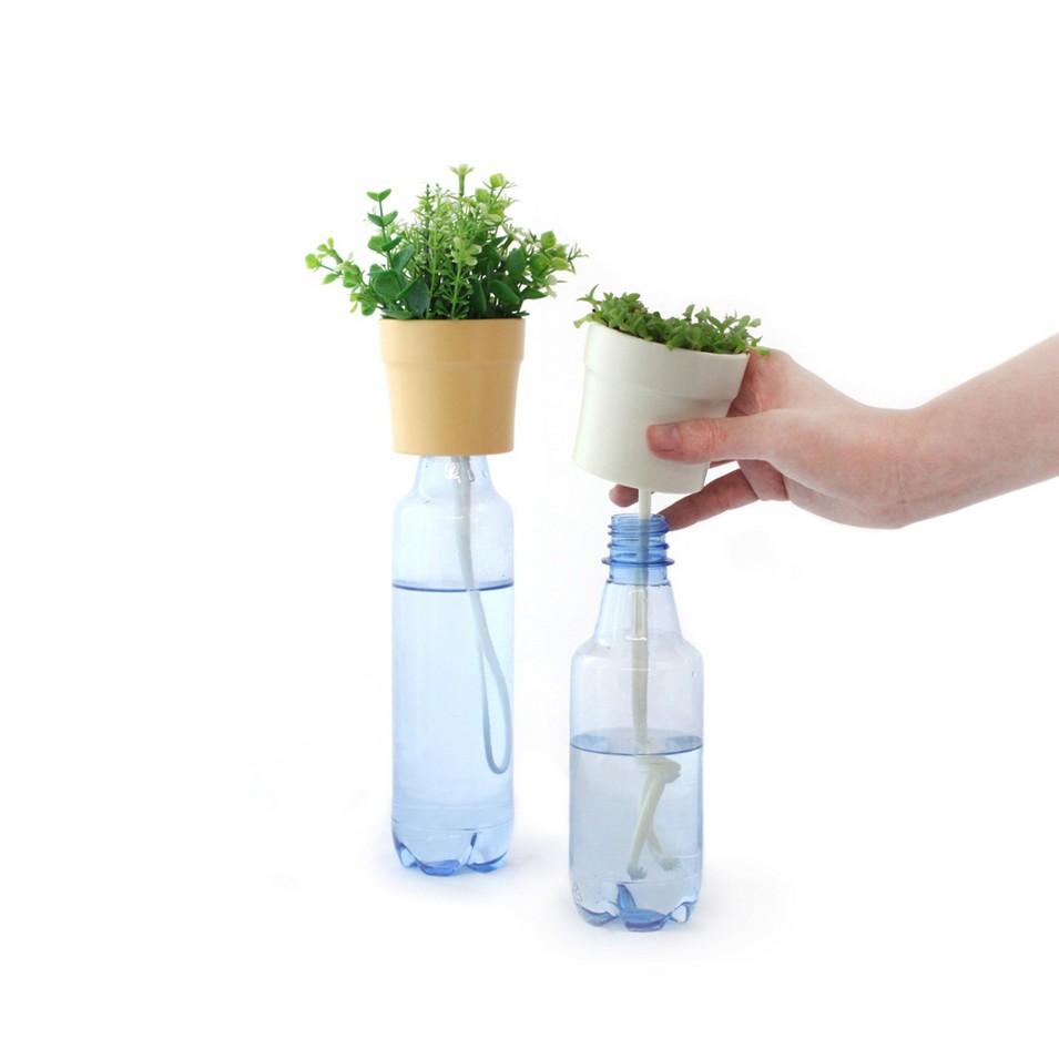 Lucky rice 瓶栽 Planttle 三入組 | 設計 | Citiesocial