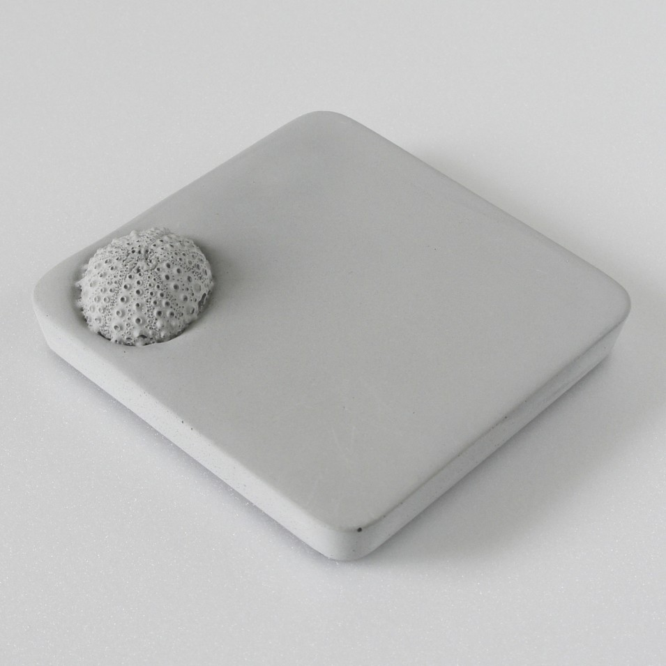 KALKI'D 環保設計 親水泥 - 神奇吸水杯墊 (海膽) | 設計 | Citiesocial