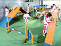 専門学校日本動物21フォトギャラリー1