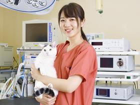 専門学校 東京スクール・オブ・ビジネス{愛玩動物看護学科のイメージ