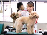 名古屋動物専門学校からのニュース画像[3562]