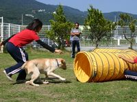 つくば国際ペット専門学校からのニュース画像[675]
