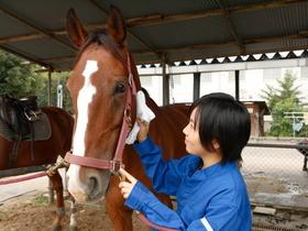 日本ペット&アニマル専門学校{動物飼育科のイメージ