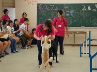 つくば国際ペット専門学校からのニュース画像[676]