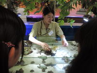 Bタイプ 学科別体験 < 2号館開催 ▷ 自然環境・動物飼育学科 >の画像