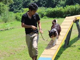 いばらき動物専門学院家庭犬訓練学科 修士科のイメージ