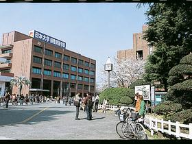 日本大学国際関係学部のイメージ