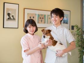 ヤマザキ動物看護大学動物看護学部  動物看護学科のイメージ
