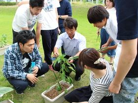 浦和大学{こども学部 学校教育学科のイメージ