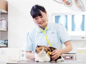 太田動物専門学校ペットビジネス学科 動物看護コースのイメージ