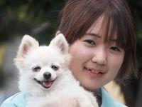 担当犬体験(飼育 編)の画像
