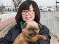 担当犬体験(被毛ケア編)の画像