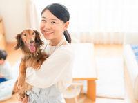 ヤマザキ動物看護専門職短期大学