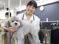 TCA東京ECO動物海洋専門学校フォトギャラリー4