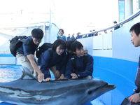 TCA東京ECO動物海洋専門学校フォトギャラリー7