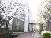東京聖栄大学からのニュース画像[908]
