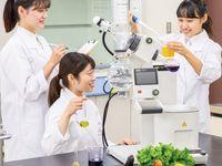 管理栄養士科説明会の画像