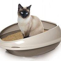 【キャットシッター直伝!】猫用トイレのおすすめ人気ランキング10選