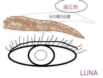 眉イラスト