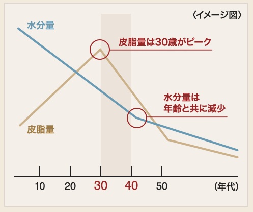 http://coffrea.jp/179 より引用