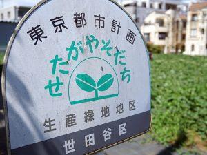 生産緑地では30年間の営農義務が課せられているが、その大半で2022年に期限を迎える