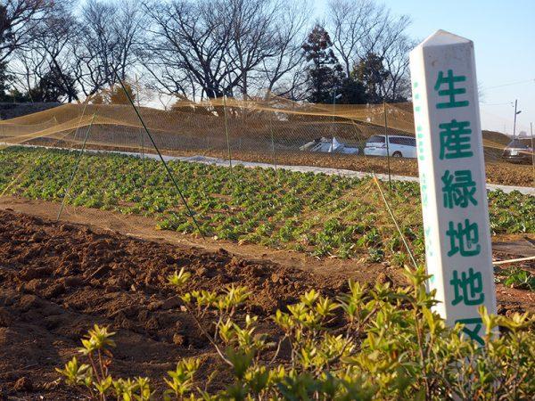 都市農地は「宅地化すべきもの」から「あるべきもの」へ方針転換が図られている