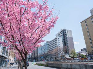 京都、御池通りの様子