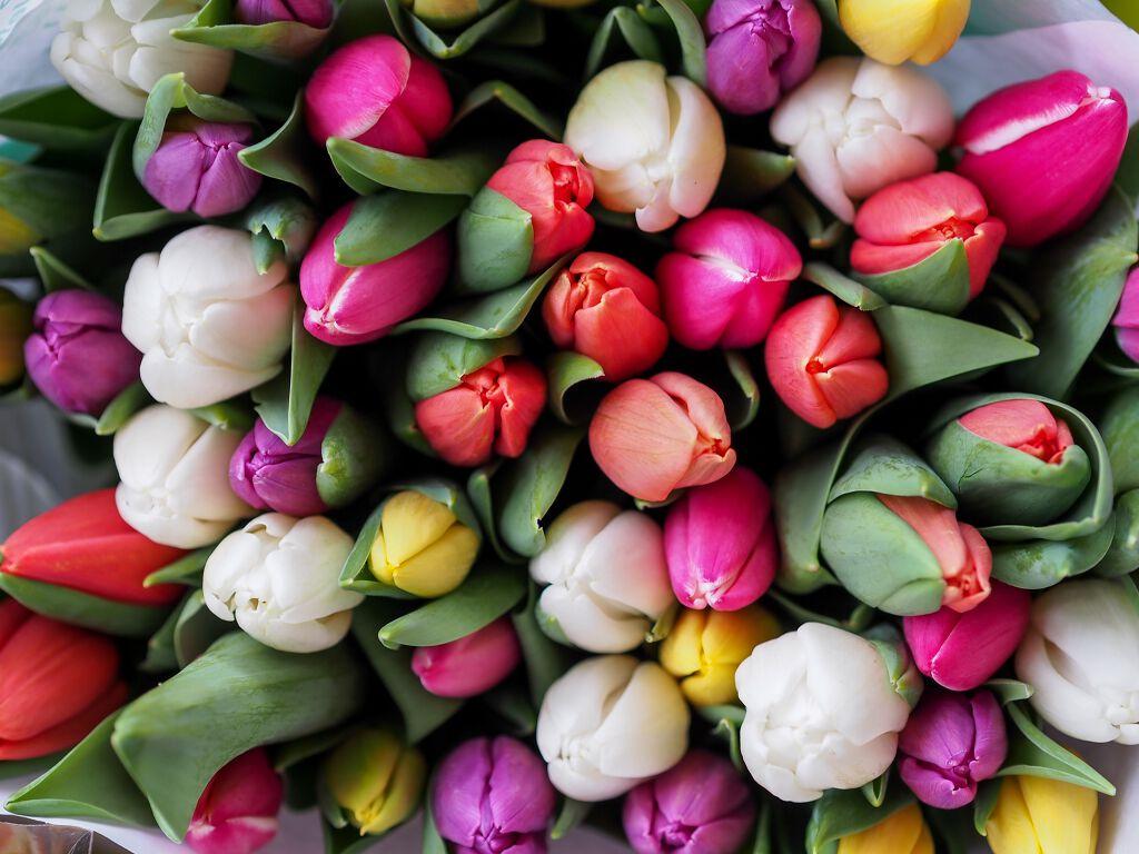 【LG春のおすすめコスメ第2弾】大学生におすすめ春コスメ✨の画像