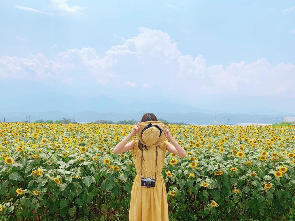 【これで完璧】ブルべ夏に合う・コスメ・服装を総まとめ。パーソナルカラーを活かして魅力UPを目指そう。の画像