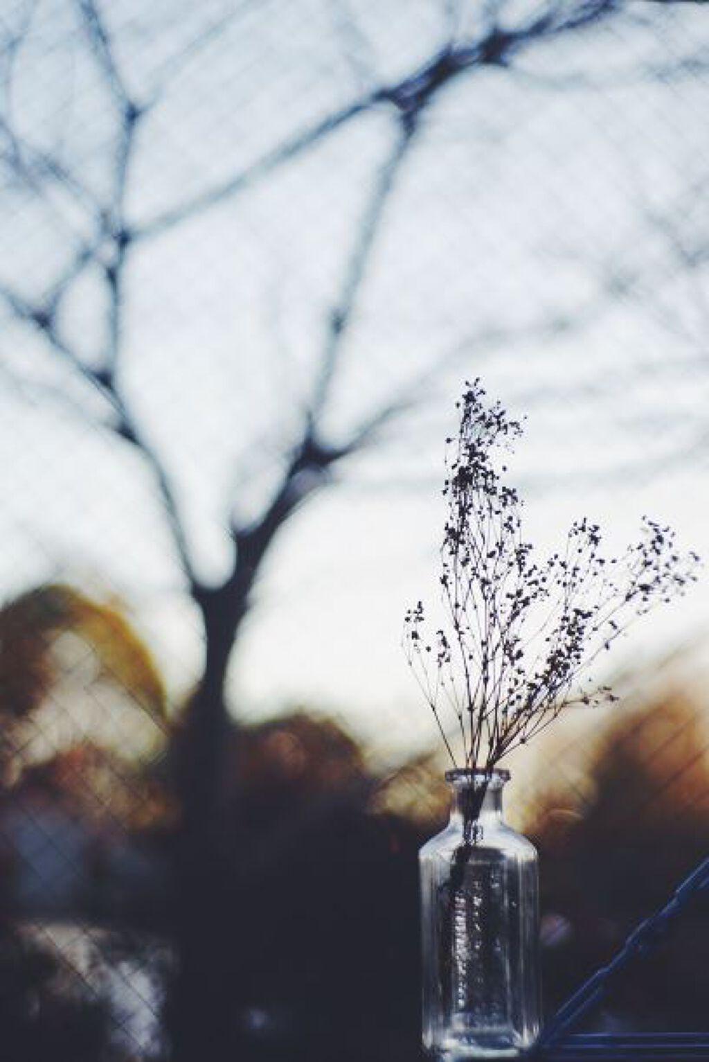 未来の自分に、美肌をプレゼント♡20代からの【はじめてエイジングケア】の画像