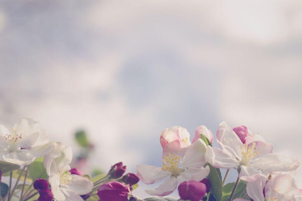 涙袋で「濡れ感可愛い」をゲットせよ♡おすすめの涙袋コスメ紹介の画像