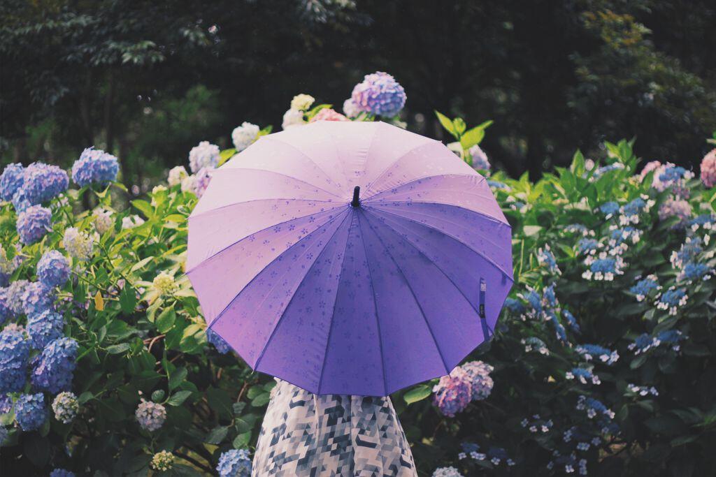 もうすぐ梅雨到来!湿気でまつ毛を上げにくい日の解決策と最強カールキープマスカラまとめの画像
