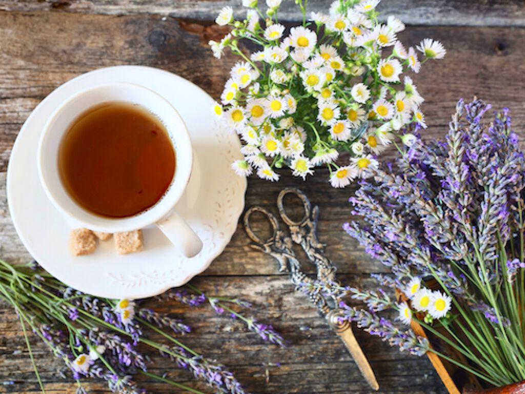 バスタイムがご褒美に。【リピ確定】紅茶の新シャンプーがトレンドの予感!の画像