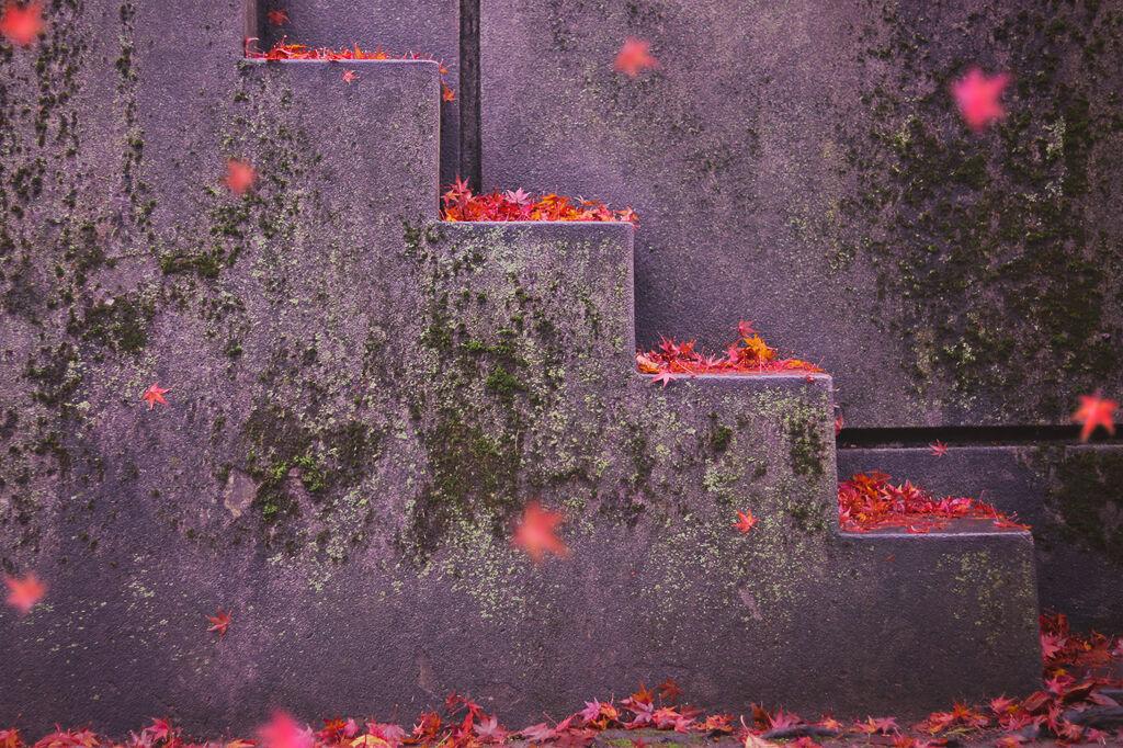 しっとりツヤ肌仕上げ♡秋冬にぴったりなソリッドファンデーション特集!の画像