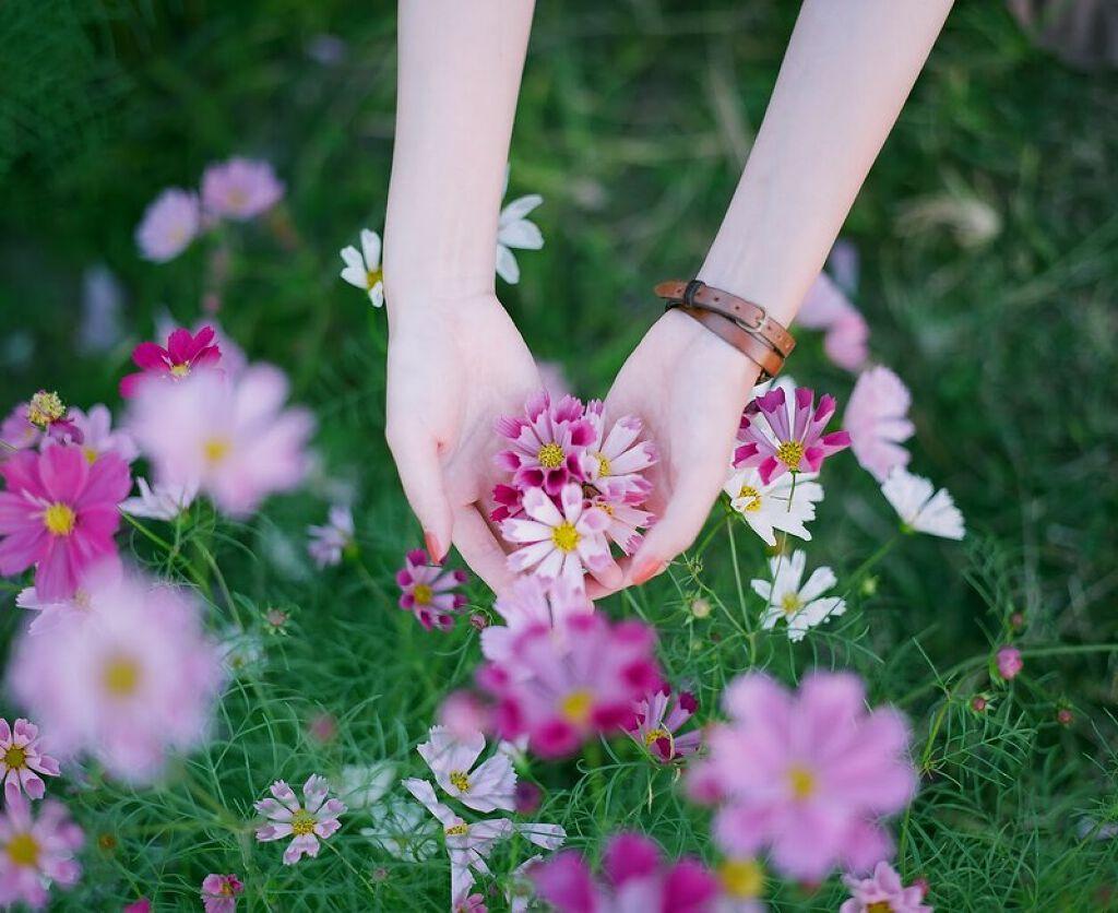 女子力UPを目指す女の子必見。愛されgirlの秘密は程よく香るハンドクリームにありの画像