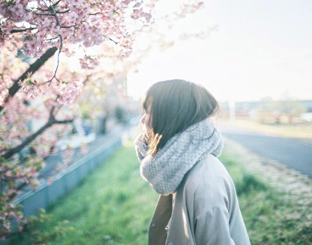"""【限定品】もう春が待ちきれない!""""さくら""""コスメで一足早く春を感じよう♡の画像"""