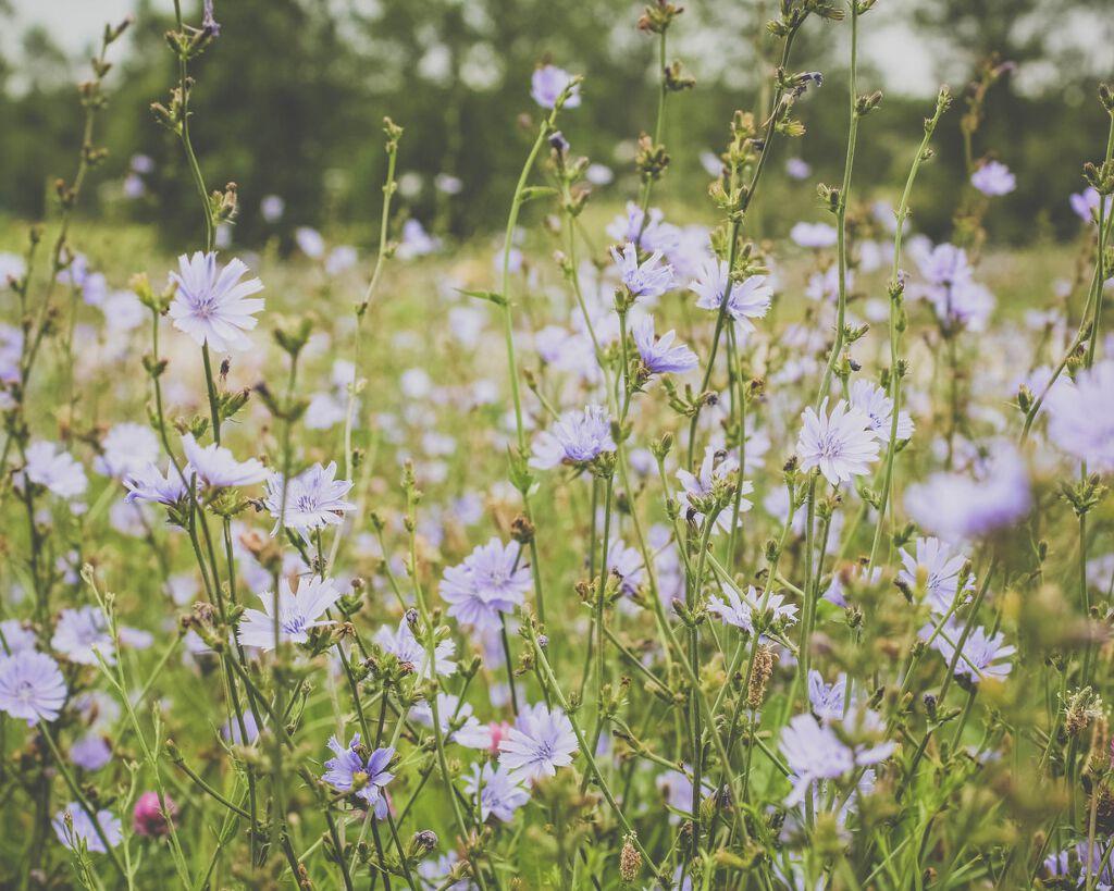 紫外線対策が透き通る肌への第一歩♡春から使う日焼け止め紹介します!の画像