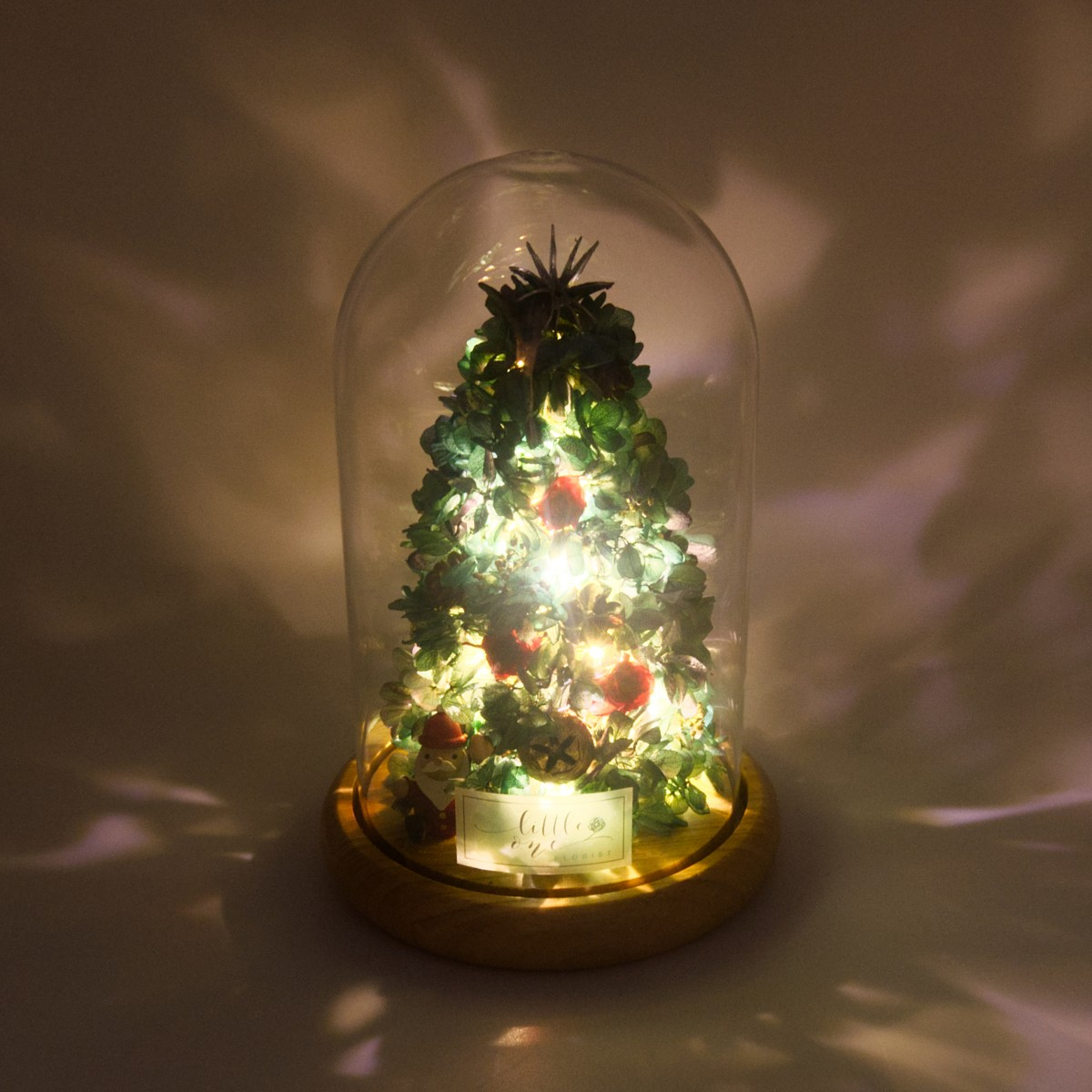 Glowing Little Tree Series - Little Christmas Tree
