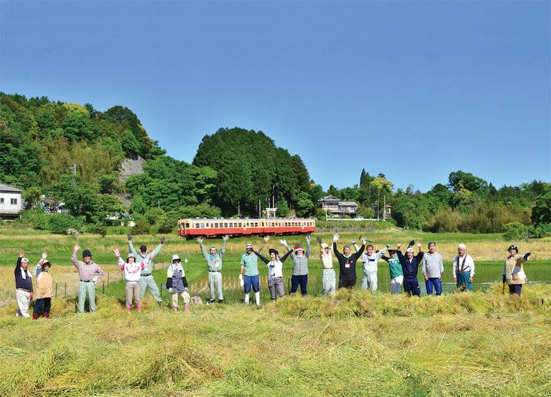 菜の花の種の収穫。地域の人たちが大切に畑を守ってきました(写真・高橋さん提供)